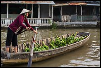 Woman paddling sampan boat loaded with bananas. Can Tho, Vietnam (color)