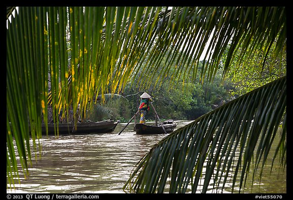 Woman paddling boat on river channel, framed by leaves. Can Tho, Vietnam