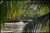 Woman paddling boat on river channel, framed by leaves. Can Tho, Vietnam ( color)