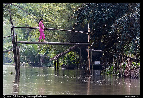 Woman crossing monkey bridge. Can Tho, Vietnam (color)