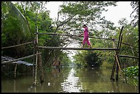 Woman traversing monkey bridge. Can Tho, Vietnam ( color)