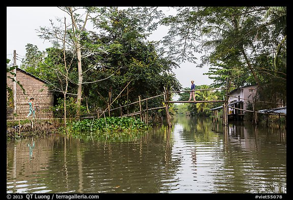 Riverside village and monkey bridge. Can Tho, Vietnam (color)