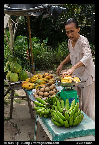 Woman selling fruit from roadside stand. Can Tho, Vietnam (color)