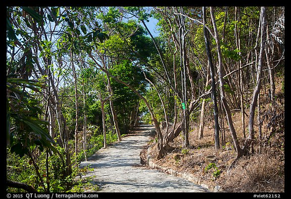 Trail, Bay Canh Island, Con Dao National Park. Con Dao Islands, Vietnam (color)