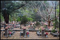 Graves, Hang Duong Cemetery. Con Dao Islands, Vietnam ( color)