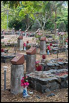 Unmarked graves, Hang Duong memorial cemetery. Con Dao Islands, Vietnam ( color)