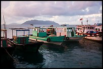 Fishing boats, early morning, Con Son harbor. Con Dao Islands, Vietnam ( color)