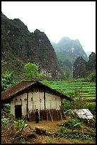 Rural home, terraced cultures, and karstic peaks, Ma Phuoc Pass area. Northeast Vietnam ( color)