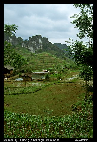 Cultures, homes, and peaks, Ma Phuoc Pass area. Northeast Vietnam (color)