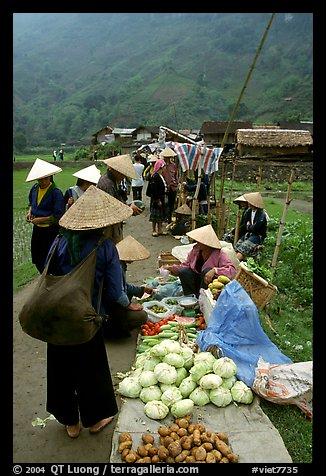 Vegetables for sale at an outdoor market near Ba Be Lake. Northeast Vietnam (color)