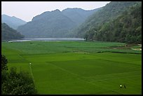Rice fields below the Pac Ngoi village on the shores of Ba Be Lake. Northeast Vietnam (color)