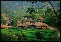 Thai village of stilt houses, near Mai Chau. Northwest Vietnam ( color)