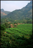 Minority village and rice terraces, near Mai Chau. Northwest Vietnam