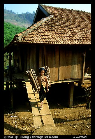 Montagnard child carries logs out of her house, between Tuan Giao and Lai Chau. Northwest Vietnam (color)