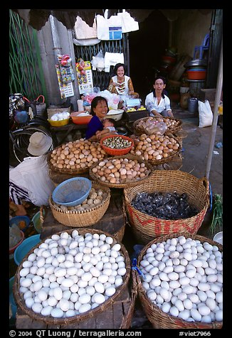 A variety of eggs for sale, district 6. Cholon, Ho Chi Minh City, Vietnam (color)