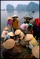 Women gathering around fresh fish catch. Halong Bay, Vietnam ( color)
