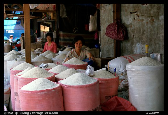 Rice is the basis of Vietnamese food, and there is a lot to choose from, district 6. Cholon, Ho Chi Minh City, Vietnam (color)