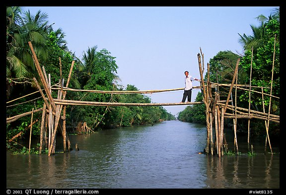 Bamboo bridge (called monkey bridge) near Phung Hiep. Can Tho, Vietnam (color)