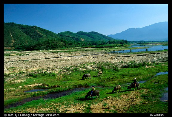 Field close to Lao border, only 50 miles from the coast, Nam Dong. Vietnam (color)