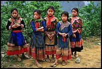 Flower Hmong girls. Bac Ha, Vietnam